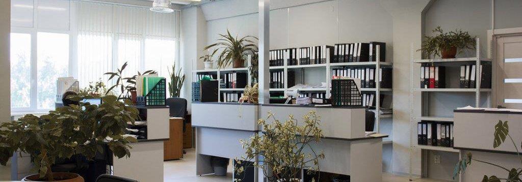 Аренда офиса в Ростове